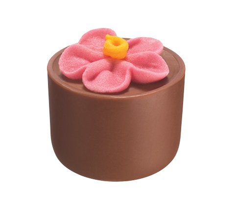 Flower Pot Pralines